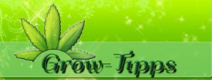 Grow-Tutorials, Grow-Anleitung