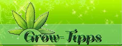 Grow-Tutorials, Grow-Anleitung