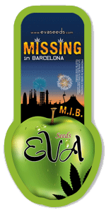 Eva Seeds Missing in Barcelona