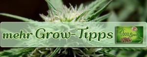 Growtipps, tips