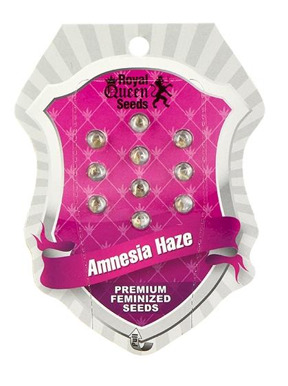 Amnesia Haze