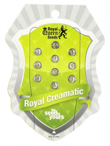 Royal Creamatic, Royal Queen