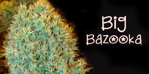 Big-Bazooka