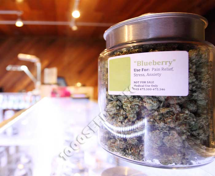 medizinisches-Cannabis, Anwenund bei Krankheiten, Einsatzgebiete, Cannabinoid-Rad