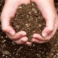 Bodenkultur