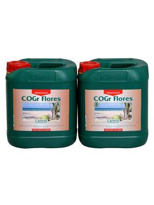 Cogr-Flores-Canna