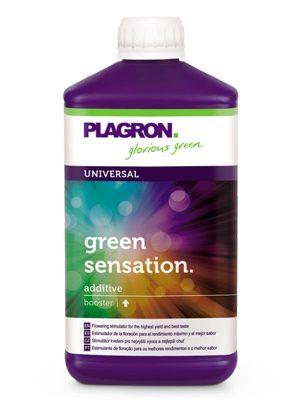 Green-Sensation-Plagron