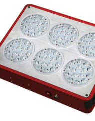 LED-Orion-Growlight