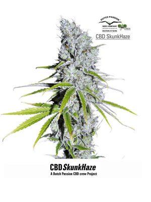 CBD-Skunk-Haze