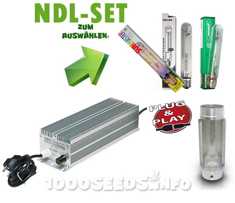 Natriumdampflampen-Set 600W