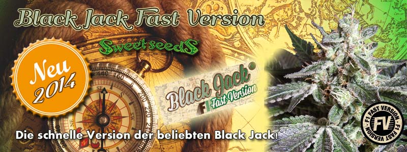 Black Jack Fast Version