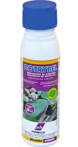 Botrybel gegen Botrytis