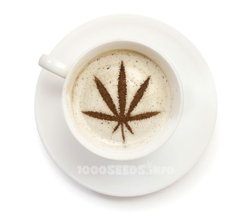 Cannabis-Kaffee, Cannabis Rezepte, kochen mit Marijuana