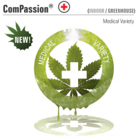 ComPassion (Dutch Passion)