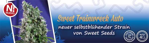 Sweet Trainwreck, Sweet Seeds