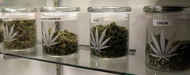 medizinische Wirkung von Cannabis