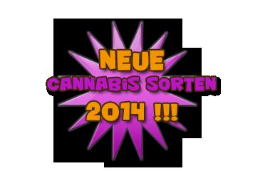 neue Cannabis Sorten 2014