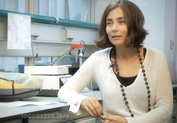 Dr.-Christina-Sanchez, Cannabis gegen Krebs, Cannabis gegen Brustkrebs