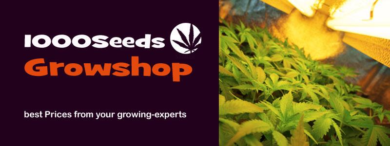 Grow-Shop 1000Seeds, Komplett-Sets, Growboxen, Grow-Licht