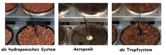 Aero Grow