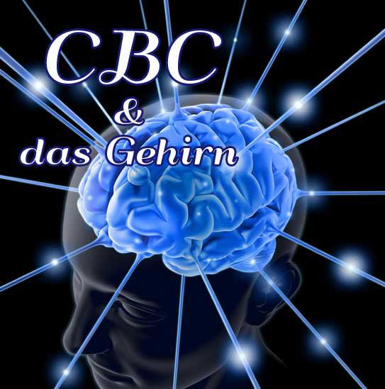 Cannabinoid CBC, CBC und Gehirnentwicklung