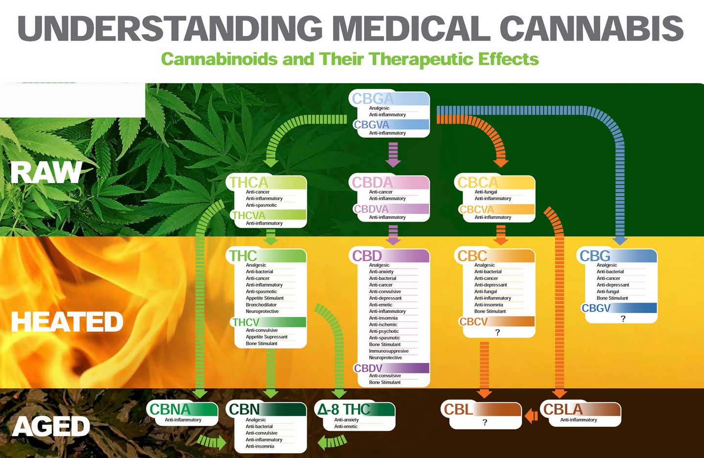 Cannabinoide Medikament