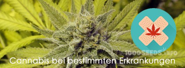 medizinisches Cannabis bei bestimmten Erkrankungen