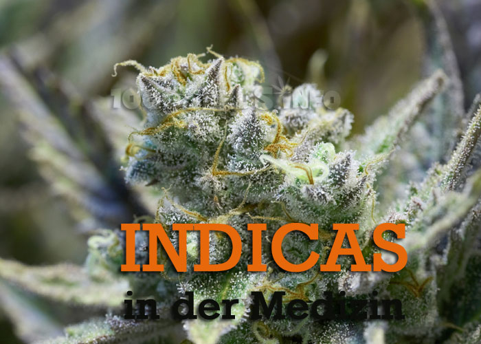 Indicas-Medizin, medizinische Anwendung von Indicas