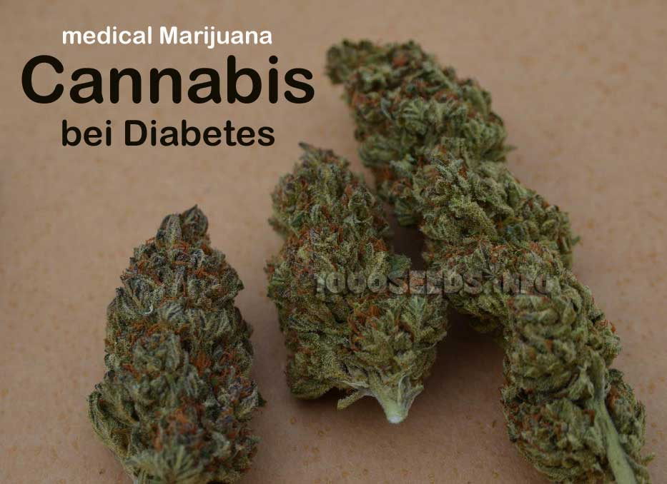 cannabis-diabetes, Cannabis in der Medizin