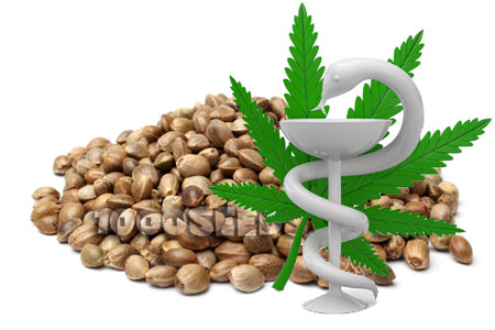 medical-seeds kaufen, medizinische Cannabis-Samen bestellen