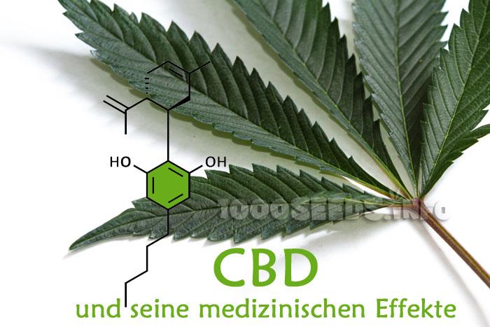 CBD-Cannabinoid, die Effekte von CBD, CBD und seine medizinische Wirkung