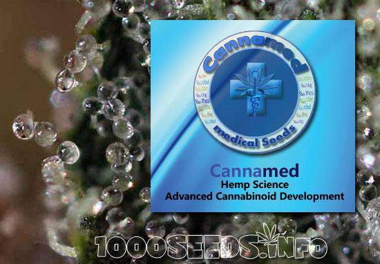 Cannamed-Sorten nach Indikationen, medical Cannabis Seeds von Cannamed