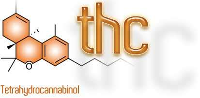 THC, medizinischer Einsatz
