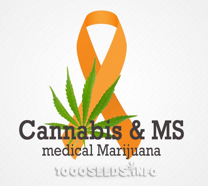 MS-Cannabis, multiple Sklerose und medizinisches Cannabis, Forschung
