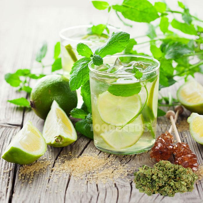 Mojito-Marijuana, Kochen mit Cannabis, Cannabis-Rezepte