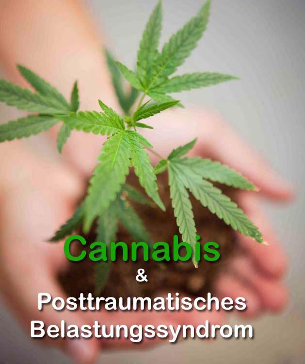 medizinisches Cannabis bei PTBS