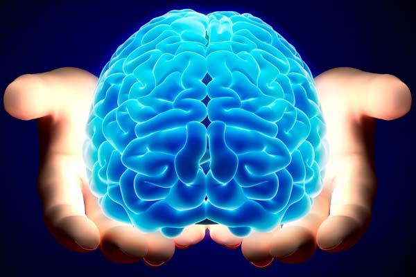 Cannabis gegen Gehirndegeneration