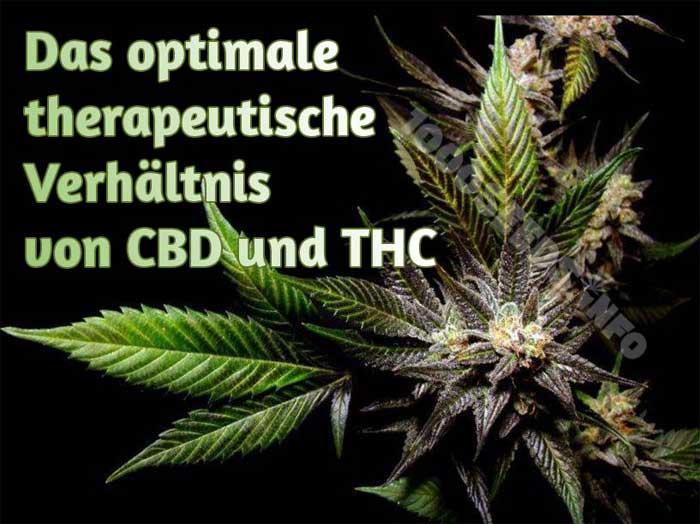 THC und CBD in Verbindung, Cannabinoide und ihr medizinischer Nutzen
