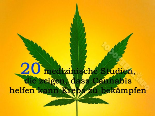 medical Marijuana im Kampf gegen Krebs 20 Studien