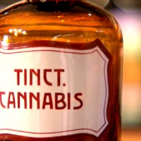 Cannabis-Tinkturen Verwendung