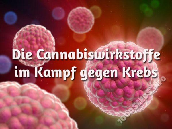 Marijuana gegen Krebs, der einsatz von Cannabis bei Krebs, medical marijuana