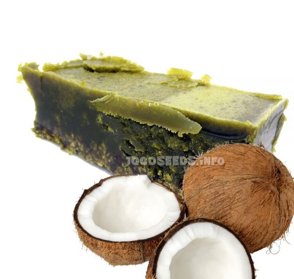 Cannabis-Cocos-Oel, Cocos-Cannabis-Oil, kochen mit Cannais