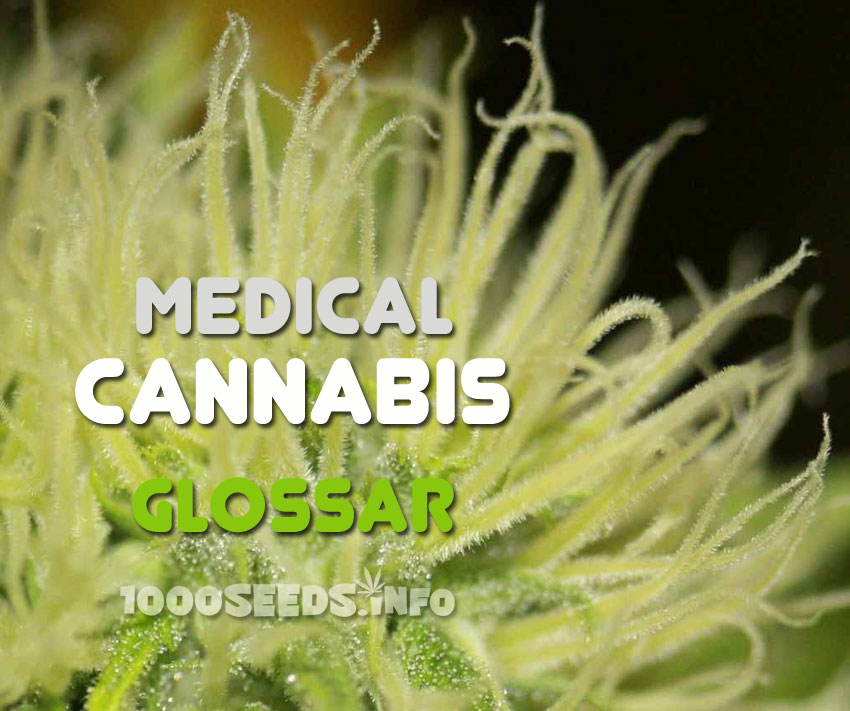 medical Marijuana glossar