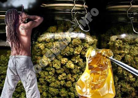 bekifft, 50 dinge, die bekifft mehr Spaß machen, Cannabis-Lifestyle