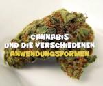Anwendungsmöglichkeiten von Cannabis