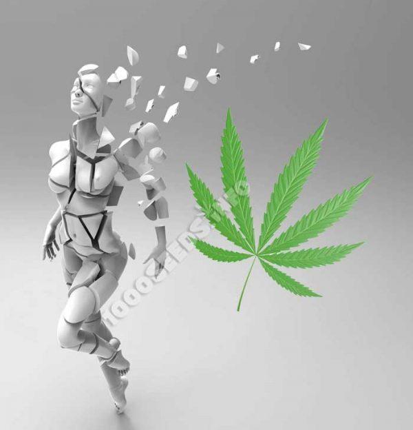 schizophrenie-und-Cannabis, medizinisches Cannabis