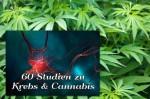 Cannabis in der Krebsbehandlung