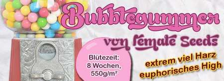 BubbleGummer