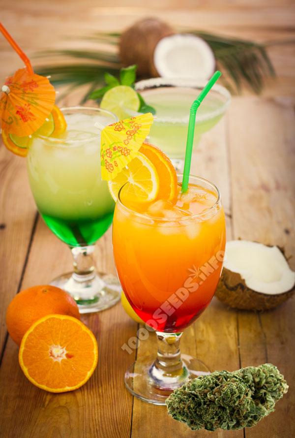 weed-MAi-tai, Cocktails mit Cannabis