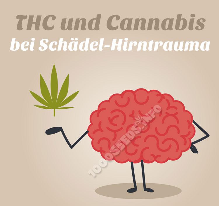 Cannabis-Hirntrauma, Cannabis in der Medizin, Cannabis und das Gehirn, therapeutischer Einsatz von Cannabis